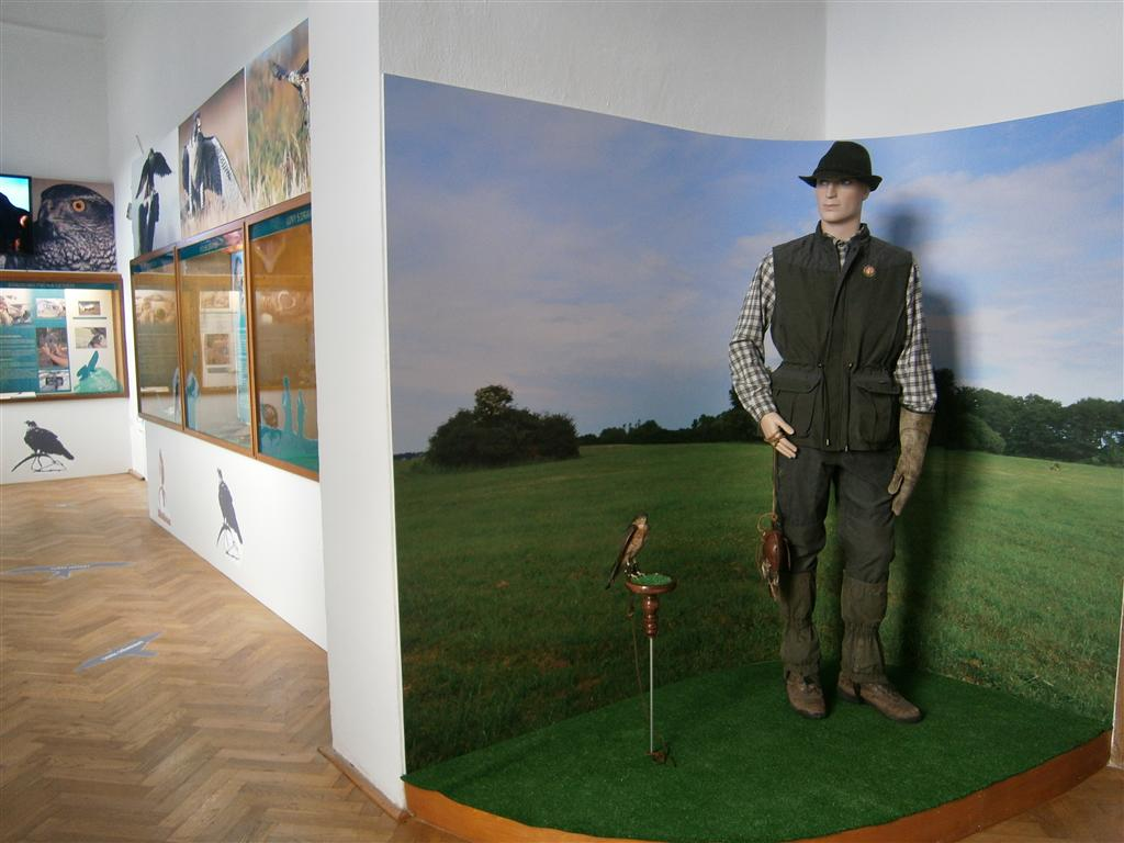 Ohrada Hunting Museum (Czech Republic)